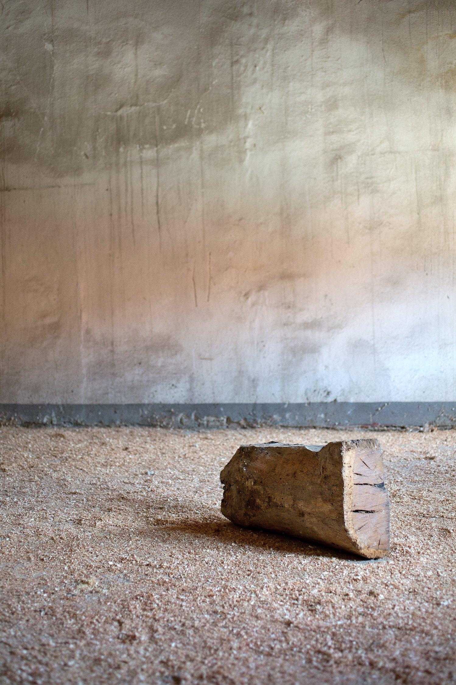 C′era una volta un pezzo di legno