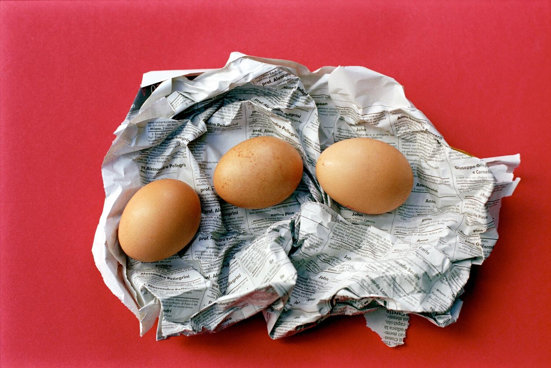 Senza nutrimento ( …e la carta dei giornali con le foto dei morti sulle uova)