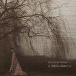 A debita distanza – Collana Autori SR Arte Contemporanea -  a cura di Angela Madesani  - Milano 2016